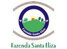 Santa Eliza